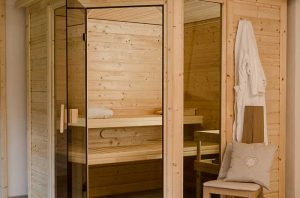 Chalet spa area Peisey Vallandry